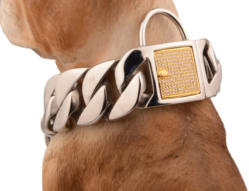 High polished stainless steel cuban link big dog training collar chain for cane corso mastiff and american bullies